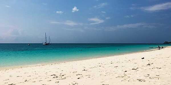 Semplicemente Zanzibar kendwa