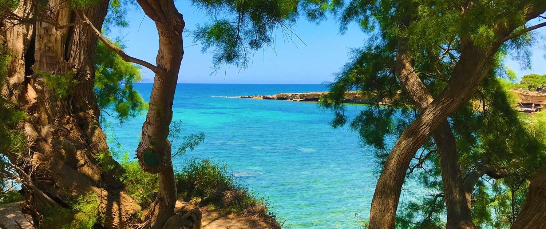 Mallorca Betlem
